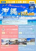 2021東京発 7月22日出発限定!沖縄4日間